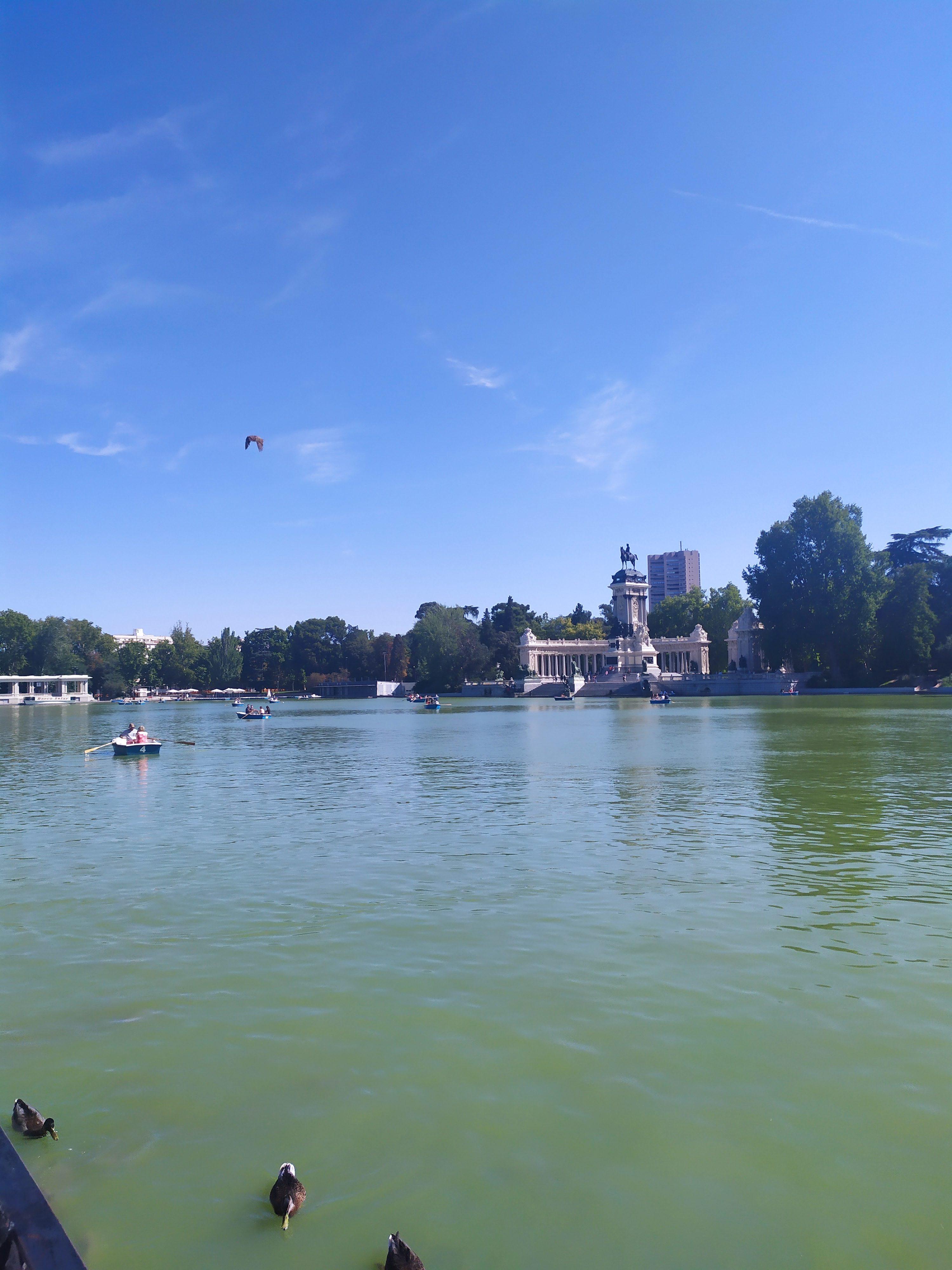 Большой пруд парка Ретиро