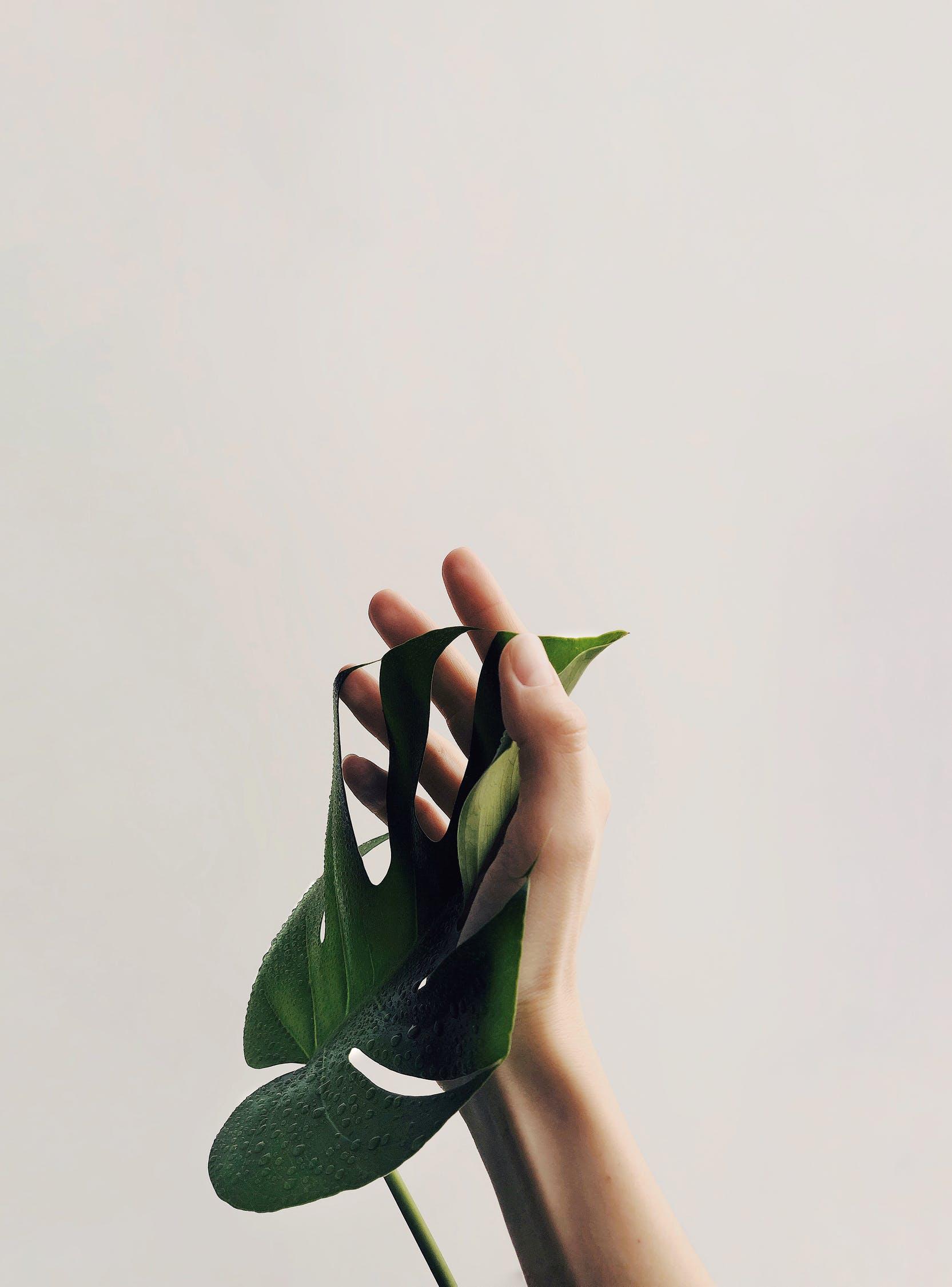 Мой путь к минимализму
